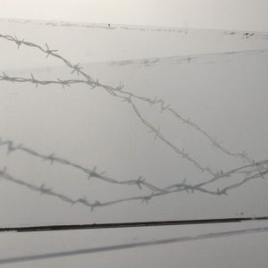 """Detail  """"Imperfect Barrier: Corralled"""""""